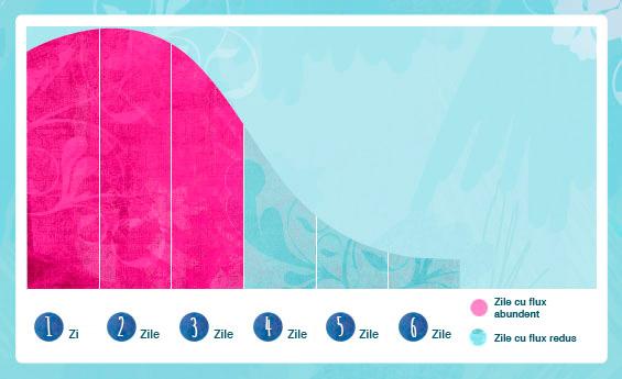 Ilustrație grafică în care sunt exemplificate zilele cu cel mai abundent flux din ciclul menstrual.